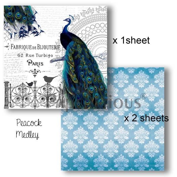 Peacock Medley (6x6) - Decoupage Paper