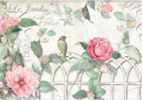 Garden with roses and birds - A3