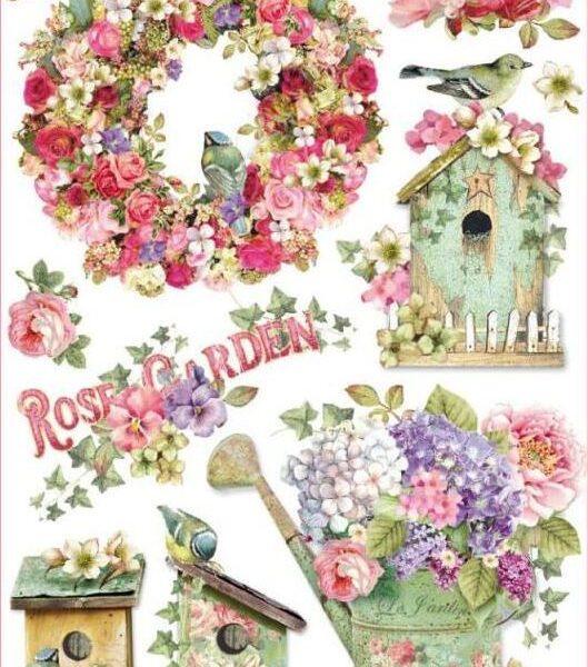 Rose garden - A4